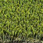 royal grass® ultra